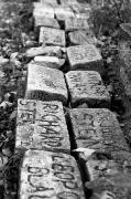 Bergen Belsen in Memory