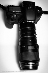 Canon ef 100mm macro USM with extension tubes