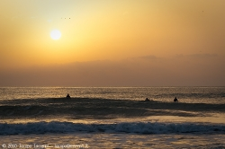 Surfing in the sunset of viareggio lucca tuscany